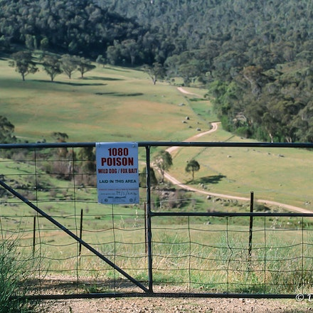 Fox bait warning on a gate in Namadgi NP - Canon T90 and Fuji Provia 100 slide film