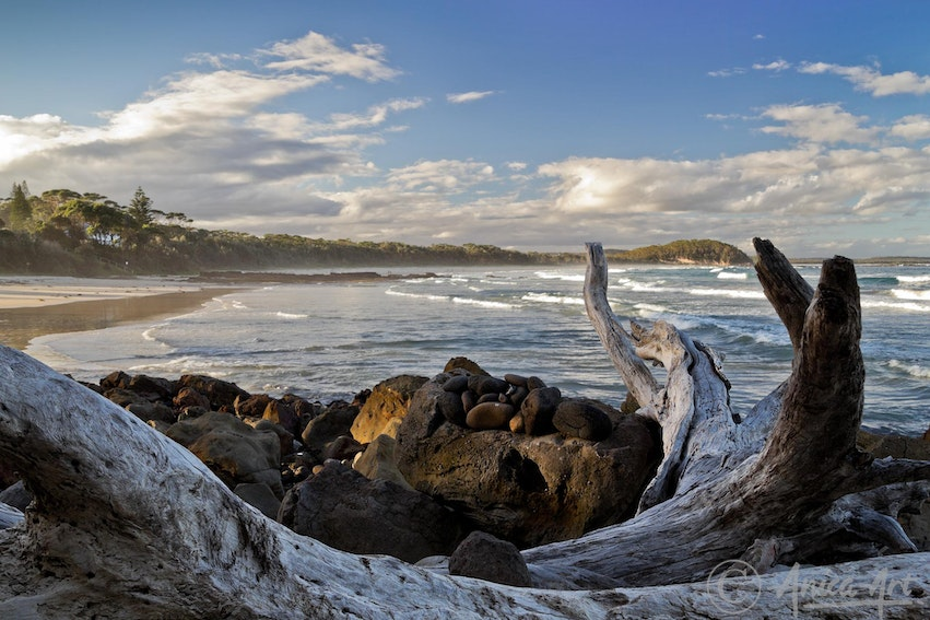 Large driftwood on rocks - Looking across large driftwood and rocks at Narrawallee Beach