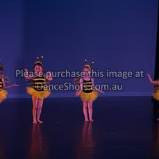 NSP end of year show