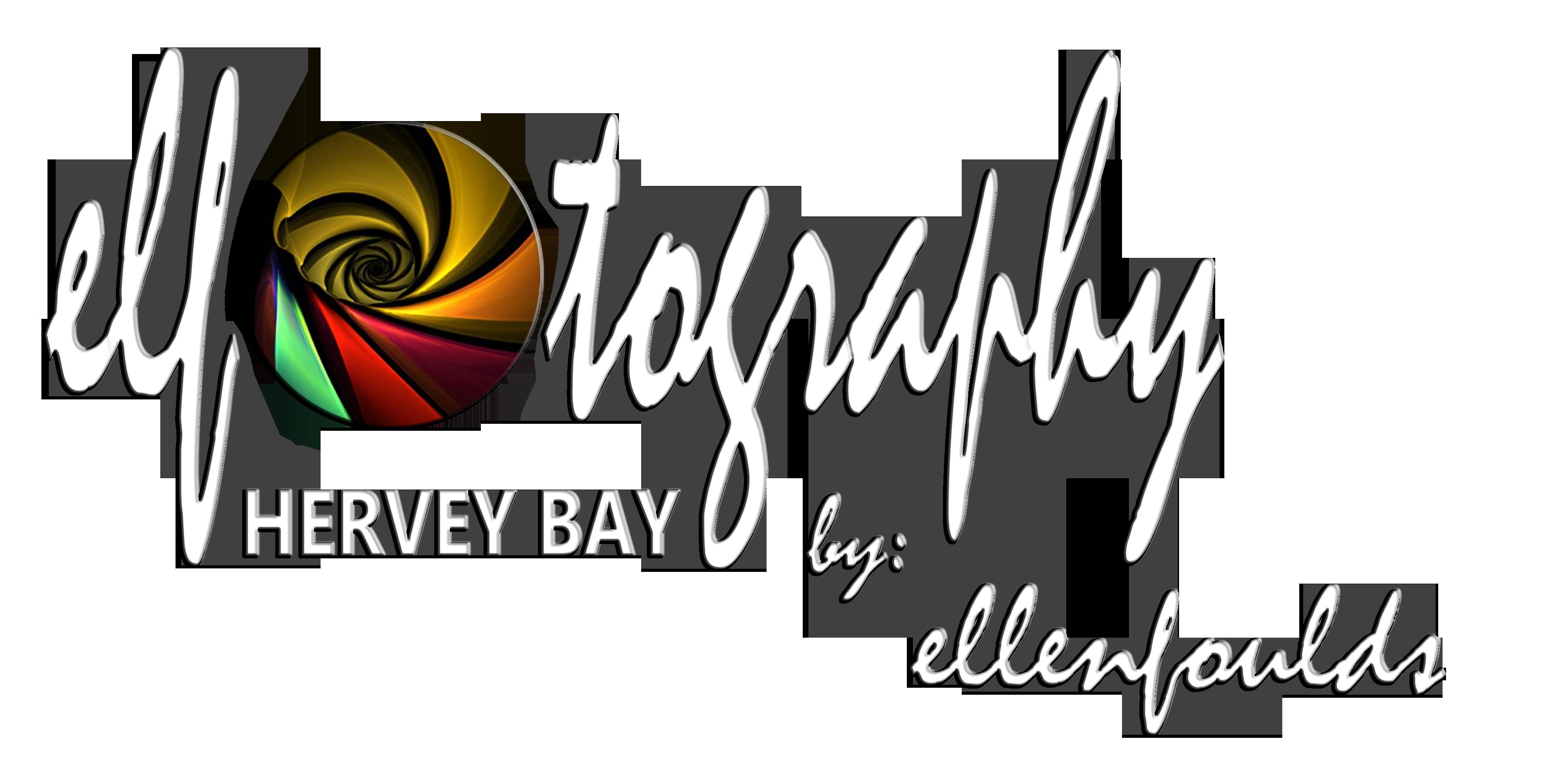 elfotography hervey bay