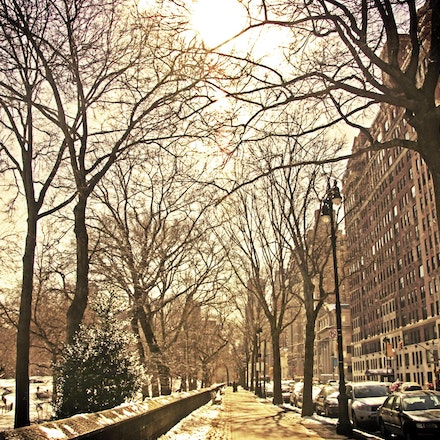 Central Park, New York City - Copyright © 2015 Melissa Fiene Photography. All rights reserved. All images created by Melissa Fiene are © Melissa Fiene...