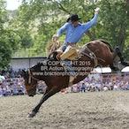 Tumbarumba APRA Rodeo 2015 - Main - Sect 1