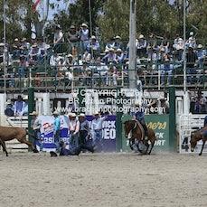 Warwick 2015 - Mule Race - Sect 2