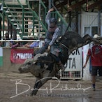 Warwick APRA Rodeo 2016 - Sunday Events