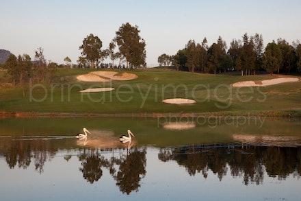 Cypress1866 - Cypress Lakes/ Golden Door shoot 20/11/09