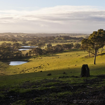 Winter Landscape - Morning in the Adelaide Hills