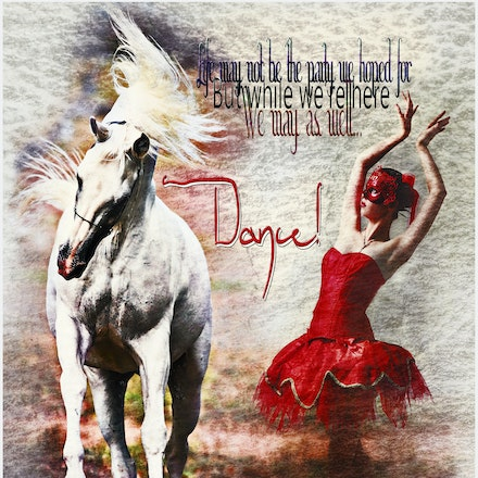 Dance - Life may not be the party we hoped for but while we are here we may as well dance.White Arabian stallion image was taken by Sharon Meyers of Sharon...