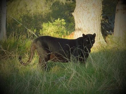 jukari_wildlife_sanctuary